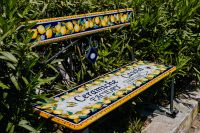 Kaboompics - Amalfi lemon theme bench