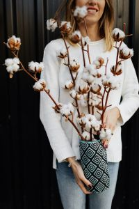 Kaboompics - Woman holding a cotton flower
