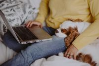 Kaboompics - A woman in a yellow sweater with a sweet dog uses a laptop