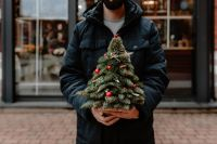 Kaboompics - The man is holding a small Christmas tree with red decorations