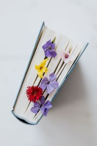 Book & spring flowers