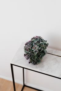 Hydrangea on a Marble Table, White Background