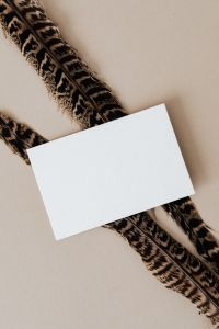 Blank card & feather on beige background