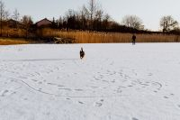 Kaboompics - Man and his dog in middle of frozen lake