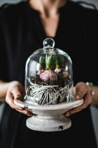 Kaboompics - Woman holding seedlings inside a glass container