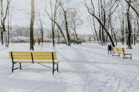 Kaboompics - Yellow benches a wintery park