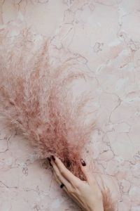 Kaboompics - Pink marble background, female hand and pampas grass