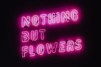 Kaboompics - Nothing But Flowers Glowing Neon