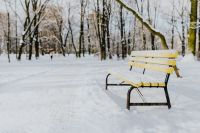 Kaboompics - Yellow bench a wintery park