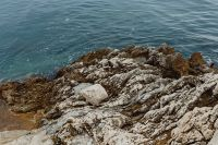 Kaboompics - Rocky coastline on the Adriatic Sea in the small town of Rovinj, Croatia