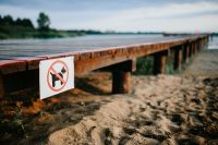Kaboompics - Wooden pier with a sign