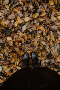 Kaboompics - From Where I Stand - autumn leaves & black shoes