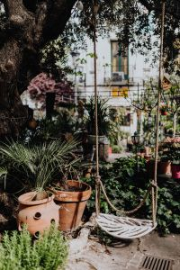 Kaboompics - Flower shops in Madrid, Spain