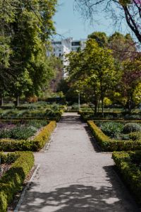Kaboompics - Real Jardin Botanico, Madrid, Spain