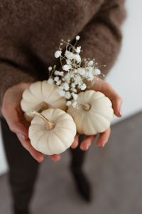 Kaboompics - Mini white pumpkins
