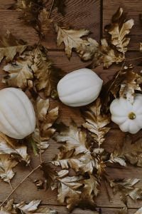 Kaboompics - White pumpkins with golden oak leaves
