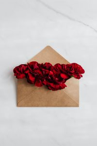 Red carnations in an envelope