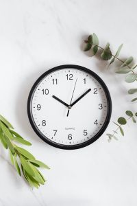 Kaboompics - Clock & Twig on White Background