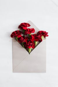 Kaboompics - Red carnations in an envelope