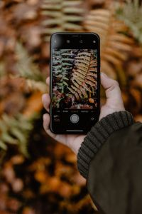 Kaboompics - A woman takes a picture with her iPhone X in the autumn forest