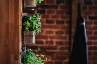 Kaboompics - Fancy interior with a red brick wall and green plants