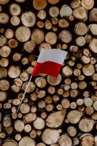 Kaboompics - Flag of Poland - Polska Flaga