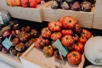 Kaboompics - A fresh tomatoes assortment displayed at San Miguel Market