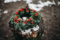 Kaboompics - A Very Merry Fresh Holly Wreath for Christmas