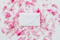 Kaboompics - Envelope on pink petals