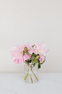 Peonies on white marble background