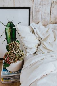 Kaboompics - White bed sheets with a picture of a green beetle and a pot plant on a stack of magazines