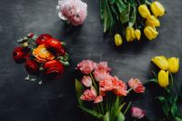 Kaboompics - Colorful flowers on grey background with copy space